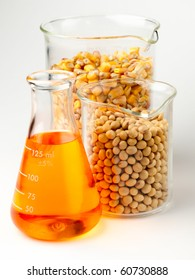 beaker of golden ethanol and flasks filled with corn and soybeans shot in lab on white background with soft shadow