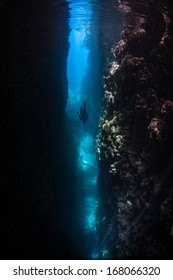 Beams of sunlight pass into the depths of an eroded coral reef in the Solomon Islands. This area is known for its extremely high marine biodiversity and excellent scuba diving.