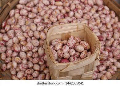 Pinto Bean Images, Stock Photos & Vectors   Shutterstock