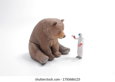 Bear with Bandage and Clinical Thermometer / sick Teddy