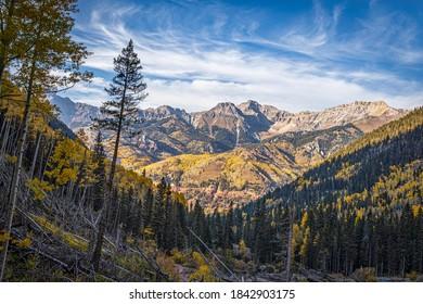 Bear Creek Trail - Colorado Overlook in Beautiful Autumn Colors
