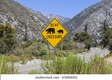 Bear crossing caution highway sign on rural mountain road.