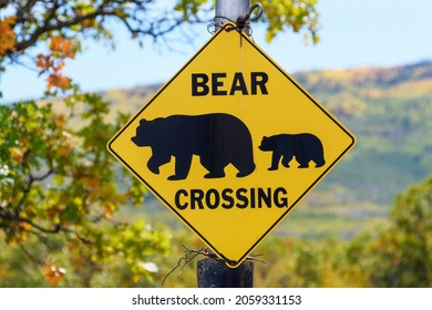 Bear Crossing road sign. Beautiful blurred fall landscape background.