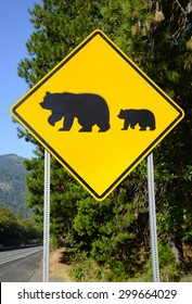 Bear crossing warning road sign in the wilderness