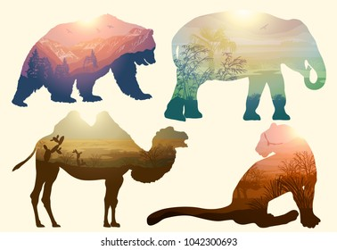 Bear, elephant, camel and Leopard for your design, wildlife concept. Raster version