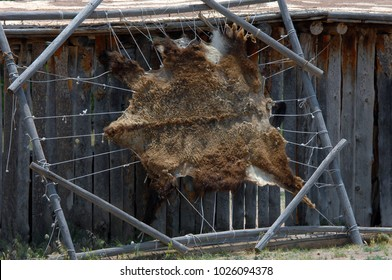Bear Hide is stretched on a wooden frame outside of a cabin in New Mexico.  Fur hide faces the outside, ropes and wooden frame stretch it.