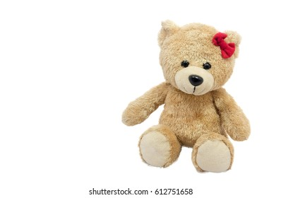 bear On the white background