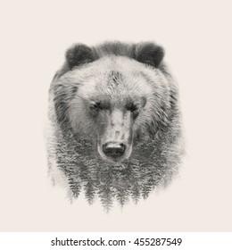 bear portrait double exposure