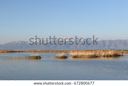 Bear River Migratory Bird Sanctuary, Brigham City, Utah, Wasatch Mountains in the background