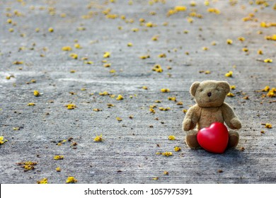 The bear sits on the street, has a heart and flowers around in the daytime.
