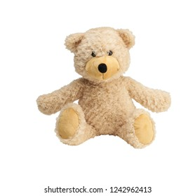 bear toy isolated
