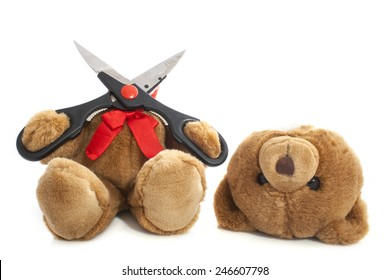 Bear whit his head cut off isolated over white