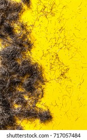 Beard hair clippings on a yellow floor from a barbers or hairdressers studio. Fashion and style concept