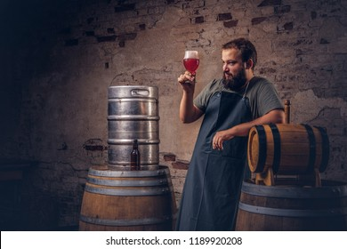 Bearded brewer in apron standing near barrels checking the quality of brewed drink at old brewery factory.