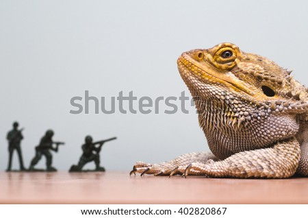 Bearded Dragon Attacked By Plastic Soldiers Foto de stock (editar ...