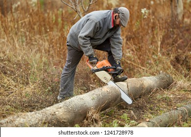 Bearded farmer with chainsaw, cutting logs in the field