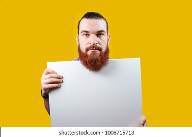 Bearded hipster man  holding a blank white paper on yellow background