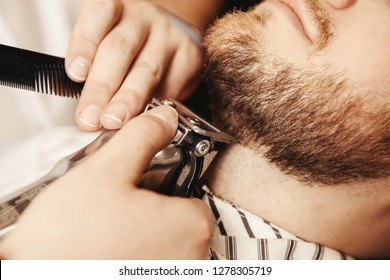 Bearded hipster trim beard in men barber shop Close up