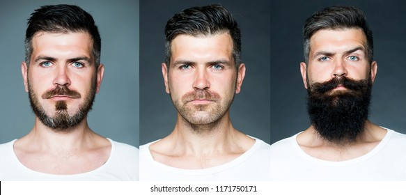 Bearded man or hipster set. Long beard. Hair style hair stylist. Barber shop design. Advertising and barber shop concept. Set of mans portrait