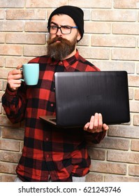 Bearded man, long beard. Brutal caucasian serious unshaven hipster holding laptop with mag or cup in red black checkered shirt with hat and glasses on beige brick wall studio background