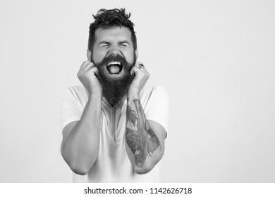 Bearded man screaming, holding his beard. Studio portrait of bearded hipster man. Sexy male, long beard. Male beard and mustache. Handsome stylish bearded man. Men's beauty, fashion. Black and white.