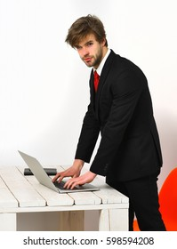 Bearded man, short beard. Caucasian stylish business man with moustache in elegant black suit and red tie working with laptop in studio on white background