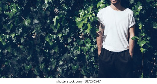 Bearded man with tattoo wearing blank white tshirt and black sunglasses.Green garden wall background. Wide closeup