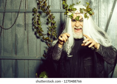 Bearded senior sly strange man wizard in long white wig vine crown as Zeus god with medallion on chain indoor on wooden background