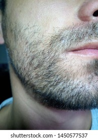 Bearded young man, stubble near. Unshaven more than a week. Hair on the face of a man, a short beard.
