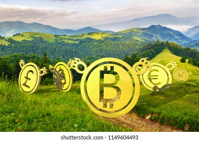 Bearish currency on slope of a hill. green summer valley descending trend. run away shamefully to the bottom at sunrise. clearing or bear market concept. composite image