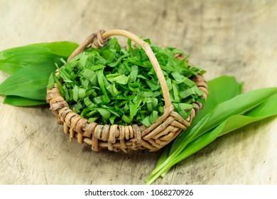 bear's garlic, wild herb