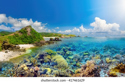 Beatiful coral reef around island Lombok,  Indonesia