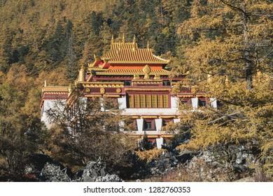 Beatiful Viewpoint of Chongu Temple , Yading Natural Reserve, Daocheng - China