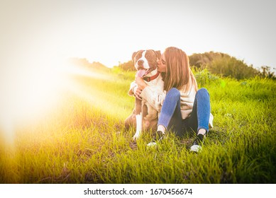 Beatiful young woman kissing dog in the field. American Staffordshire terrier