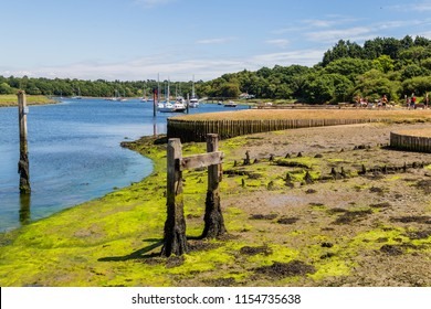 Beaulieu River along the historic shipbuilding village Buckler's hard in the New forest in Hampshire, England, United Kingdom