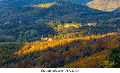 Beautifal autumn beech forest en mountain Montseny in Spain