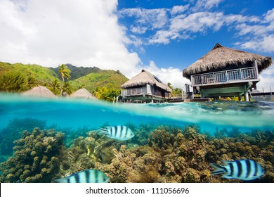 Beautiful above and underwater landscape of Moorea island in French Polynesia