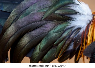 Beautiful abstract background consisting of the red Junglefowl feathers