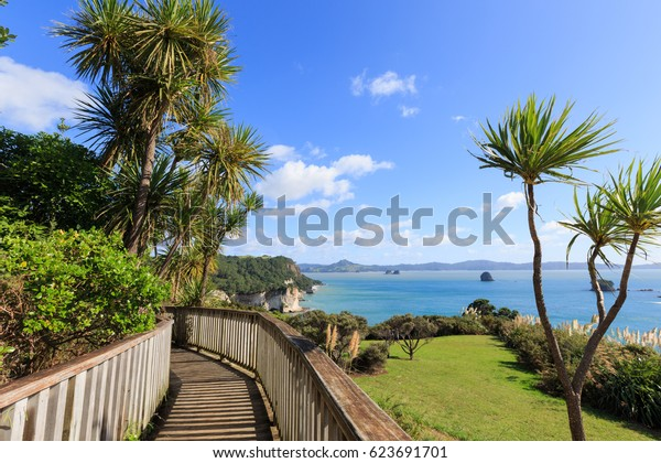 Beautiful of Abstract boardwalk way to Beach at Cathedral Cove, Coromandel Peninsula - New Zealand