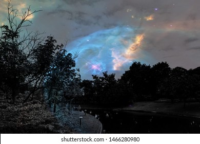 Beautiful abstract texture colorful black and white flowers and tree plant forest landscape  on the darkness and aurora Polaris and the stars on the sky milky way galaxy background and wallpaper