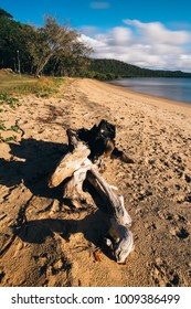 Beautiful Adams Beach on Stradbroke Island, Queensland
