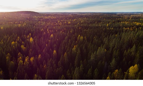 Beautiful aerial landscape of autumn forest before sunset on Finland
