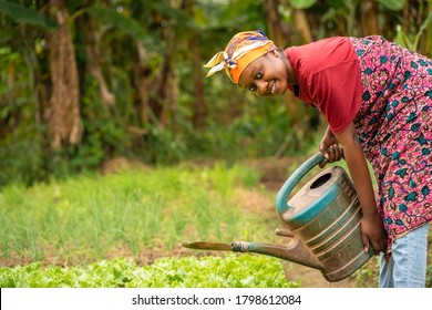 beautiful African lady with head scarf, plastic container-landscape image of Black woman in a greenfield with pretty smile-farming concept