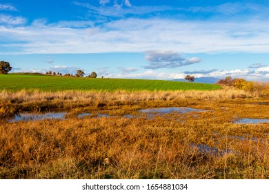 Beautiful agricultural marshland landscape near Paralia Mesis in Rhodope prefecture, Greece