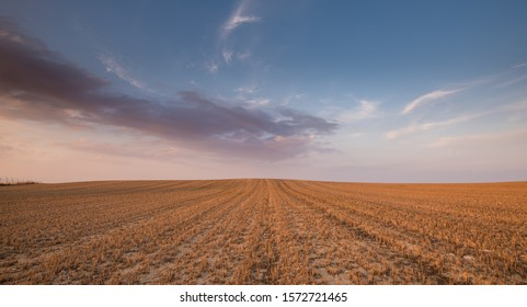 Beautiful Agricultural meadow field and cloudy sky during sunset.