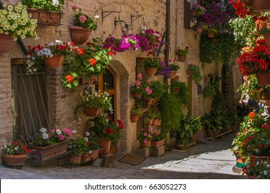 Beautiful alley of medieval Spello village with flowers
