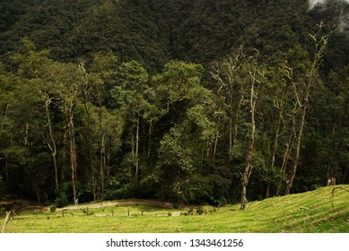 Beautiful alpine landscape of Cordiliera Central, Salento, Colombia, South America