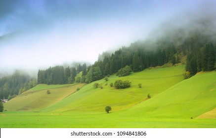 Beautiful alpine landscape with dense fog covering hill slopes over fresh green meadow