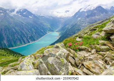 Beautiful alpine landscape with flowers and azure mountain lake in the background, Zillertal Alps, Austria