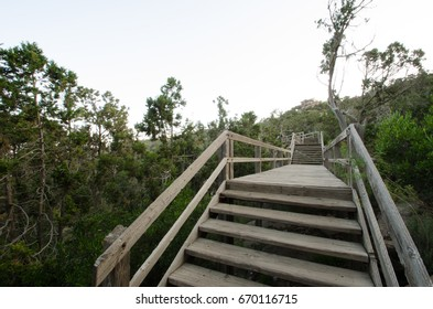 """The beautiful and amazing countryside in Abha city south area of Saudi Arabia """"Alsouda Highland"""". Wooden bridge"""